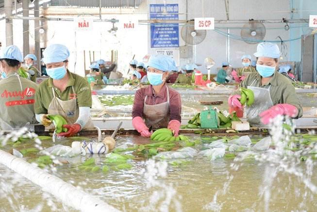 Bất ngờ với người mua hàng Việt Nam nhiều nhất thế giới
